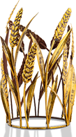 Golden Wheat Accent Shade
