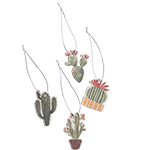 Cactus Go-Card Variety Pack