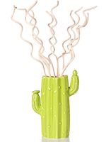 Cactus Vase with Curly Reeds