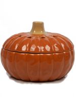 Harvest Pumpkin Simmer Pot
